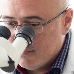 Dr. Daniel Coutu sits at a microscope